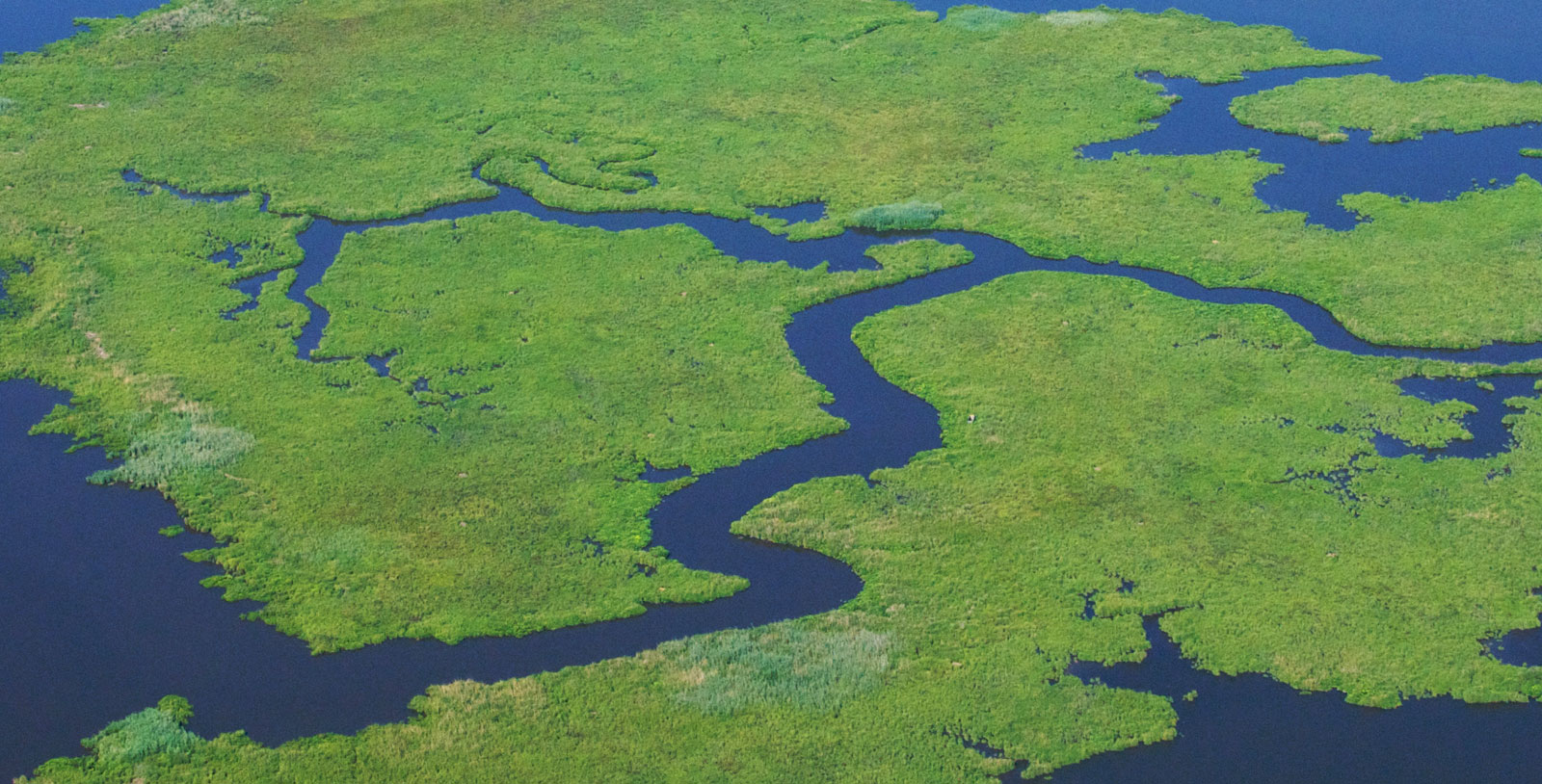 Chesapeake Conservancy wins National Grant for Nanticoke River Conservation