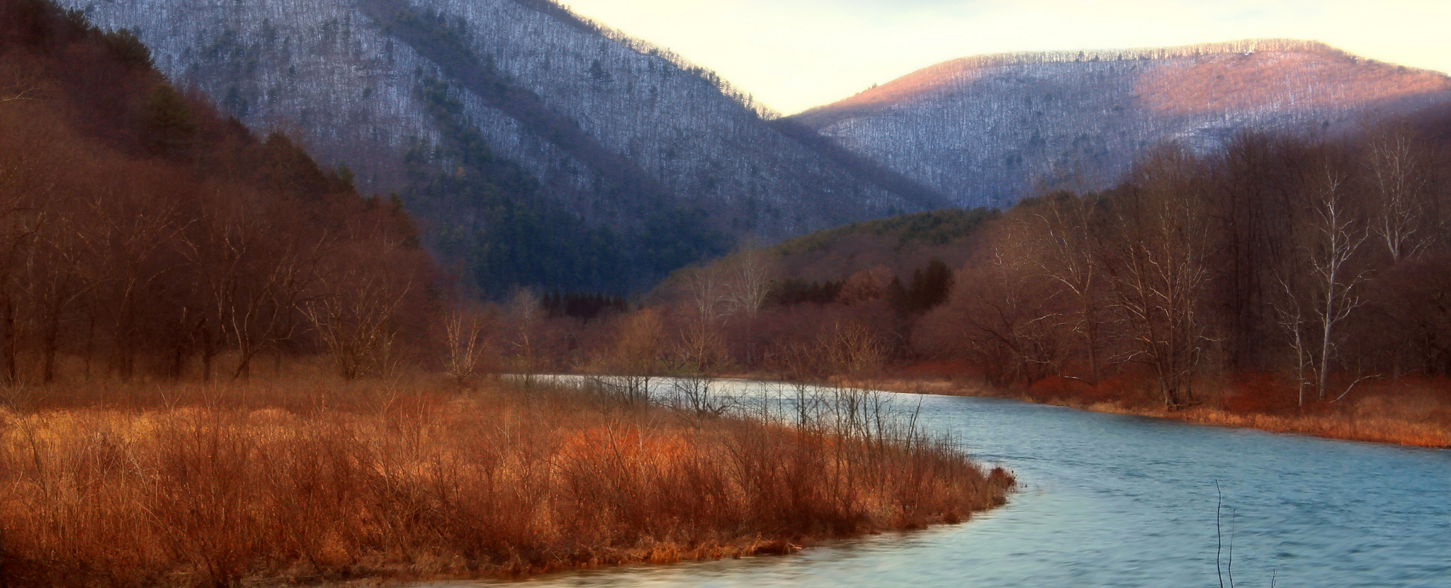 Bay Land Conservation Receives End-of-Year Boost
