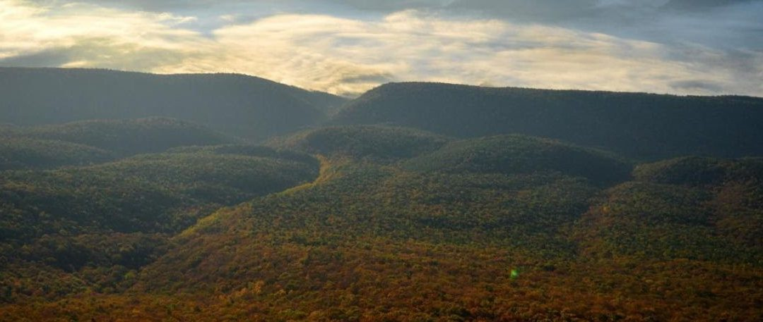 Large Tract Protected in Chesapeake Watershed