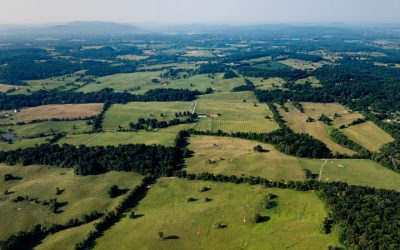 Over 12,000 Acres Protected in Piedmont Region in 2019