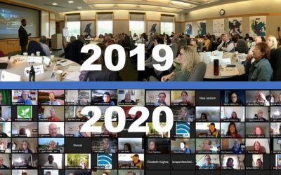 A Virtual Annual Meeting – How Did We Do?
