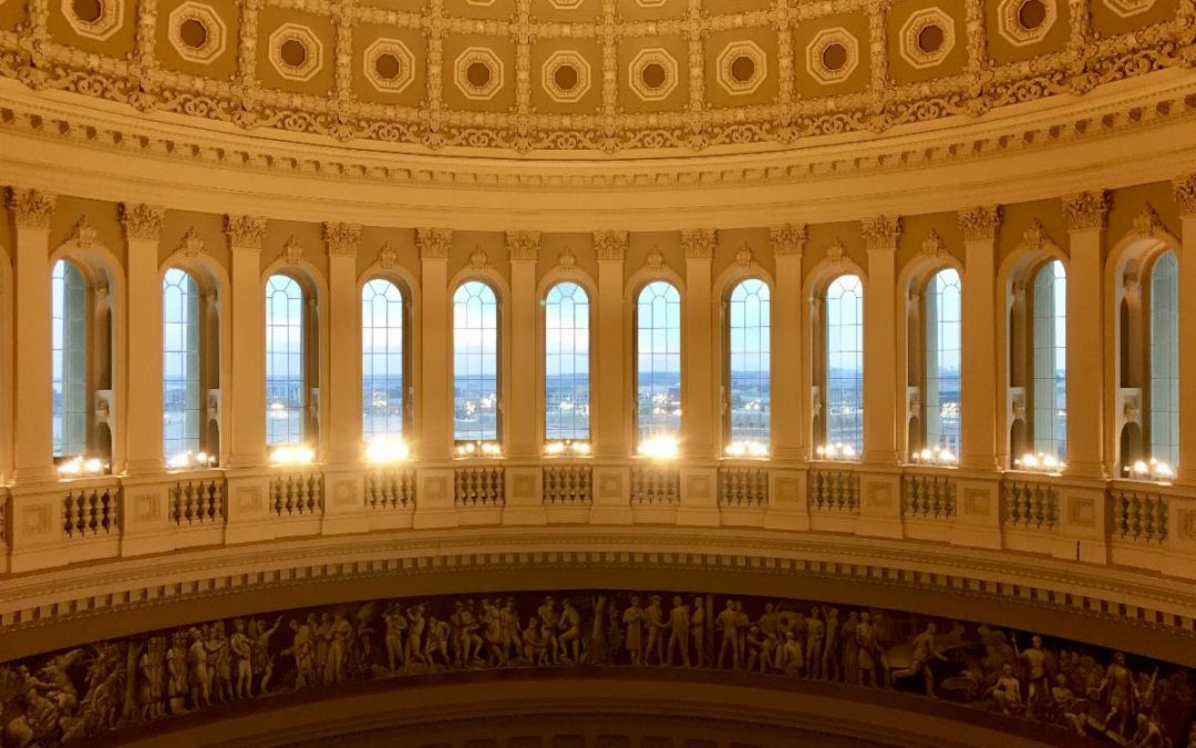 The Capitol. American Democracy. And Our Responsibility.
