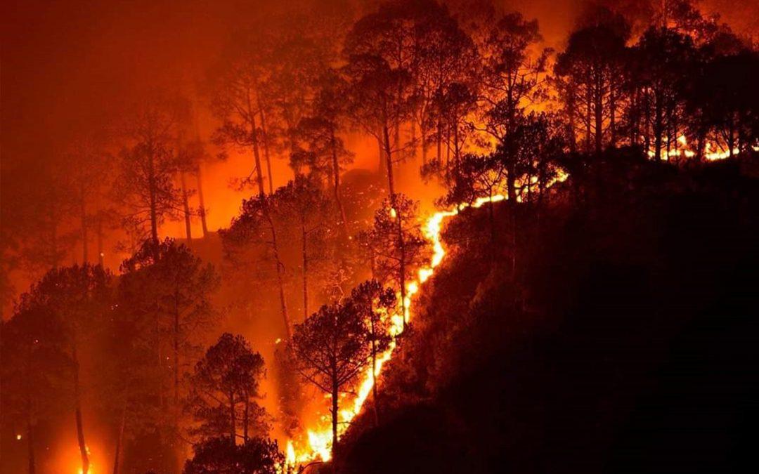Hot Hot Hot! Global Warming Red Alert